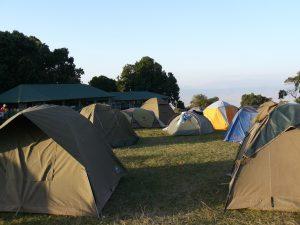 Caming Ngorongo