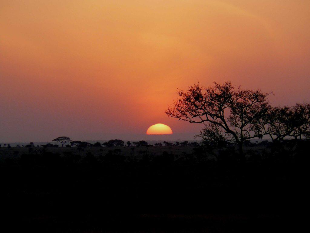 Savane Lever du Soleil