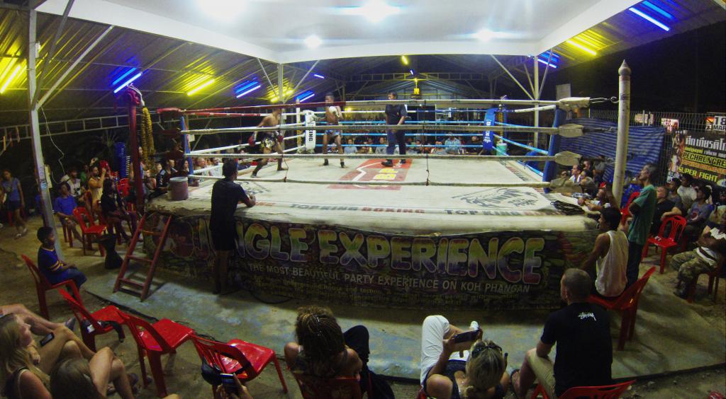 combat boxe thai