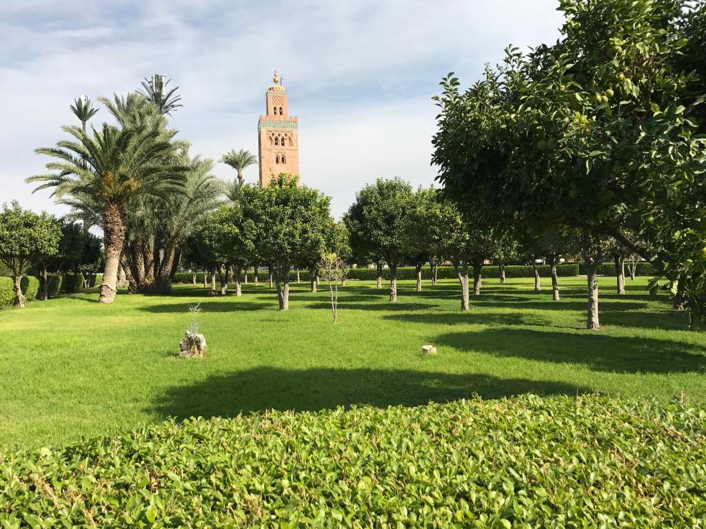 marrakech_koudoubia-jardin