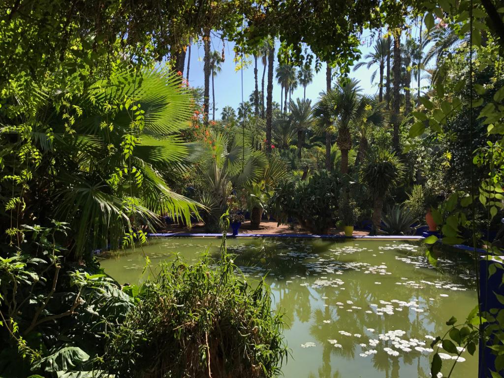 marrakech_jardin-majorelle